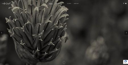 snímka WordPress stránky radkolegat.sk